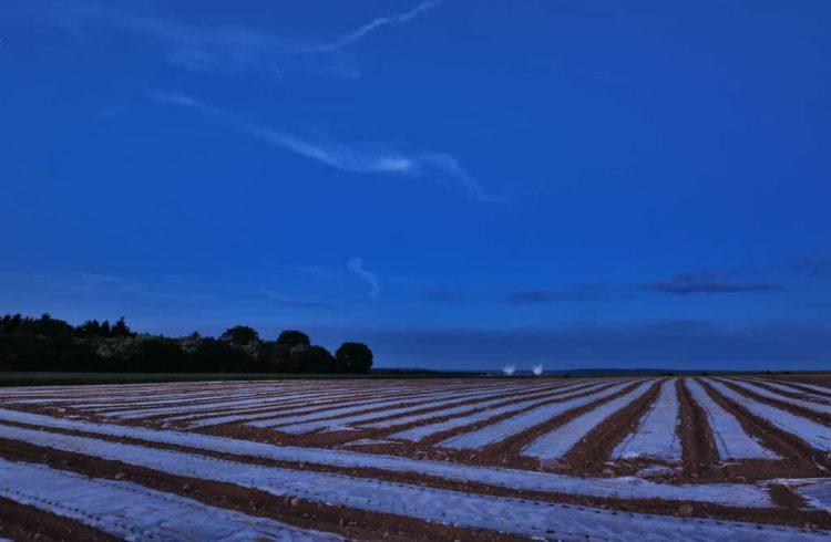 mezőgazdasági fólia